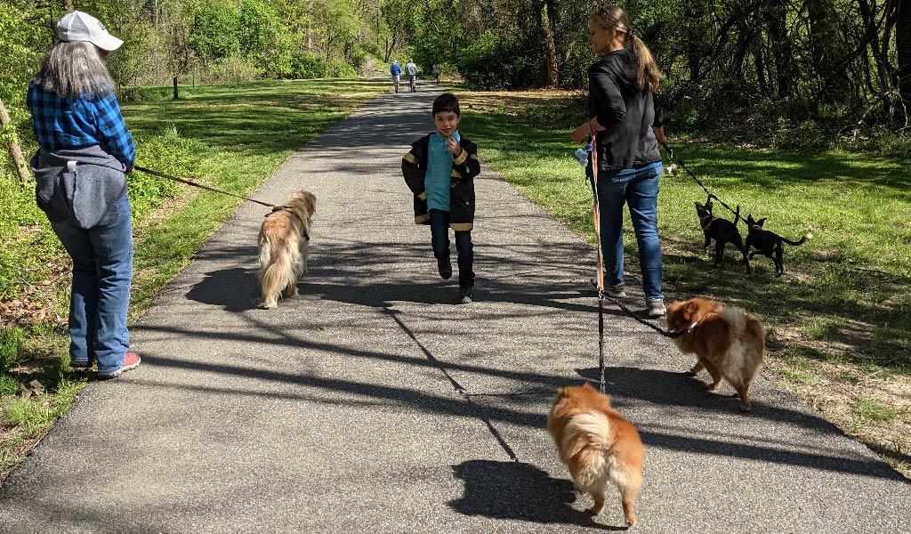 Homeschooling: The Socialization Factor